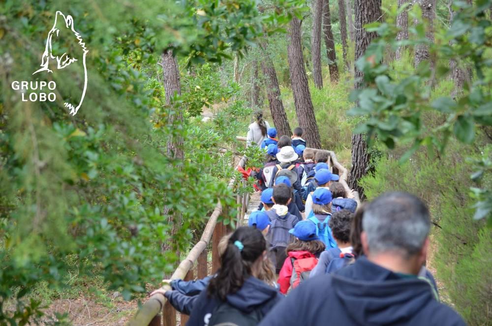 Grupo Lobo | Environmental awareness and education actions