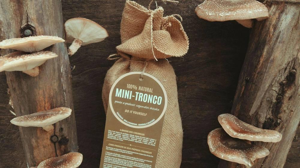 Hello Nature   Mushroom kit