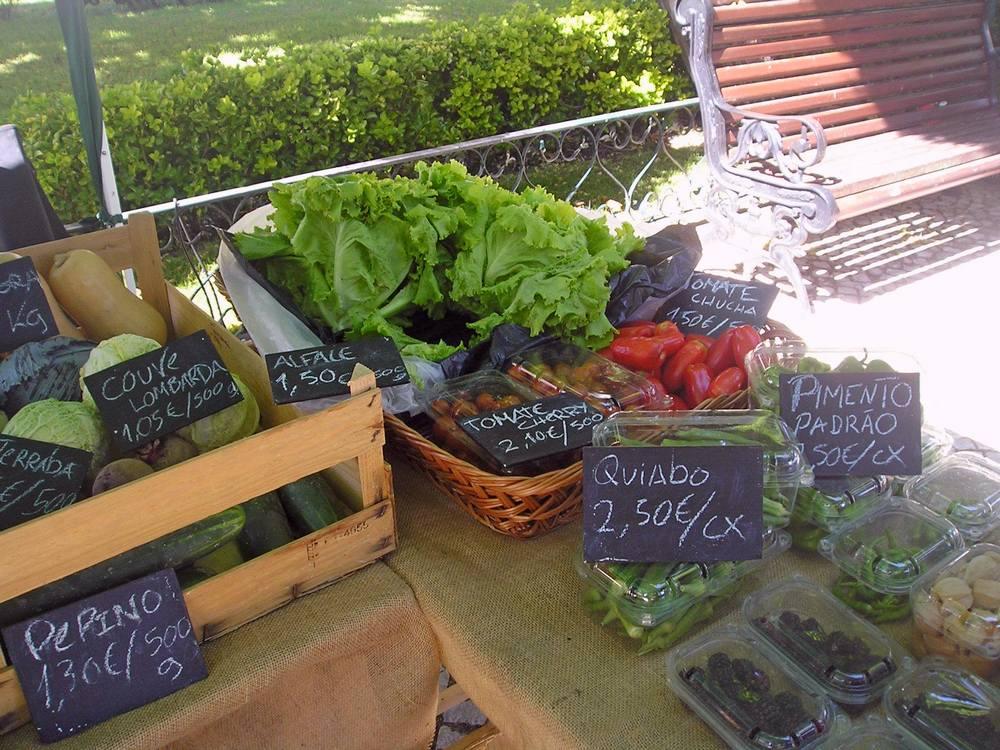 5f32889f0 Mercado Agrobio de Loures | Mercado de rua biológico