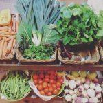 Quinta dos 7 Nomes | Mercearia produtos biológicos