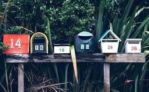 Simbiotico.eco Newsletter