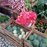 Sintr'Aromas | Mercado de Almoçageme
